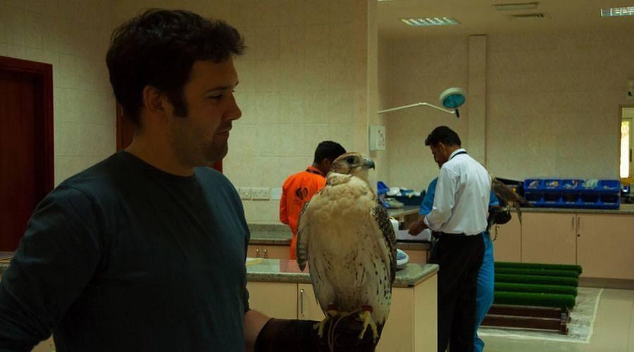 falcon hospital
