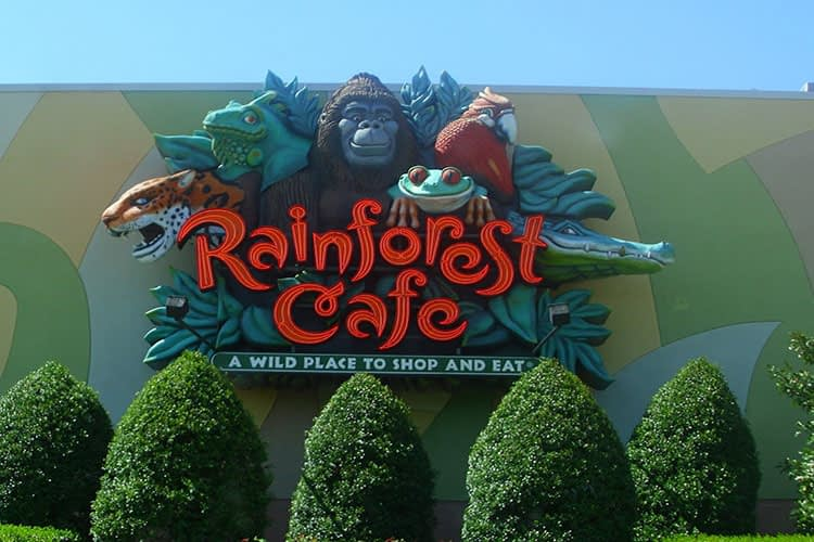 Rainforest Café dubai