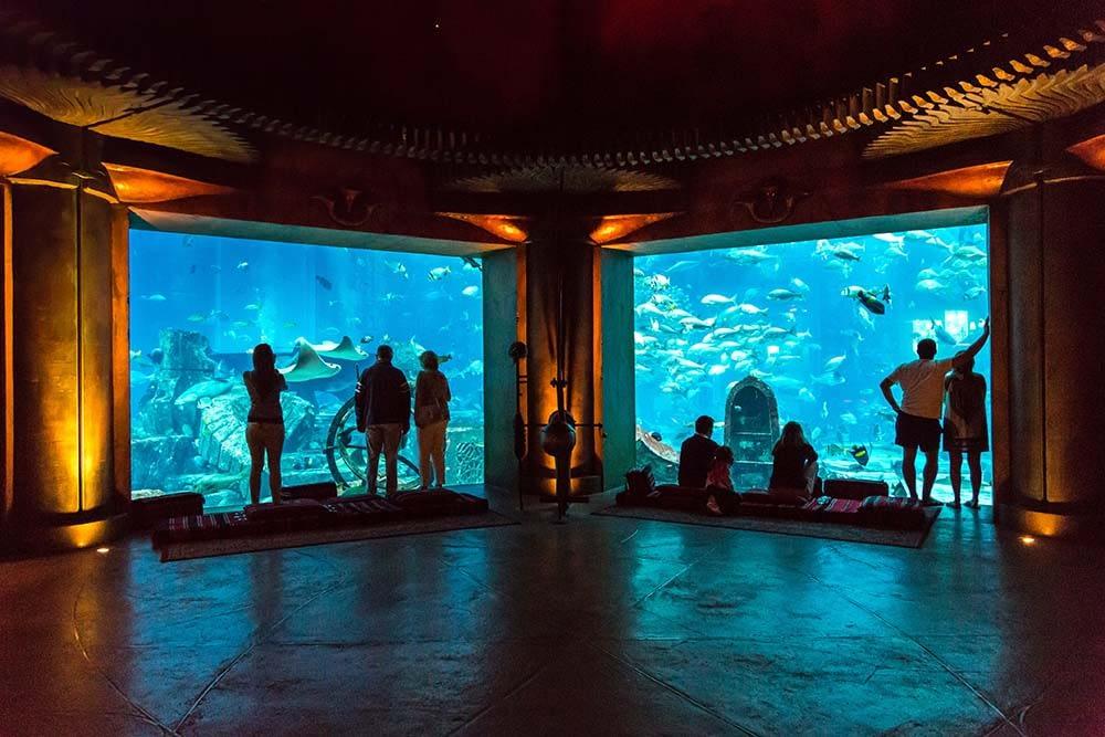 dubai mall aquarium   Tales from Around the World